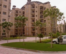 3 bhk Flat for sale in Ats Golf Meadows Derabassi .