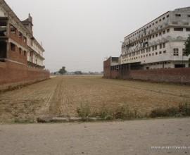 1200 sq.yd. Industrial plot sale in derabassi industrial area .