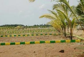 Plots for sale near zirakpur at Gbp Astra
