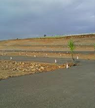 Chep Plots Sale in Lalru