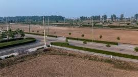 Plots For SAle in Rose Valley Estate