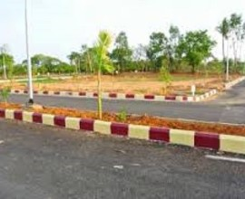 Plots Sale in River Side Estate