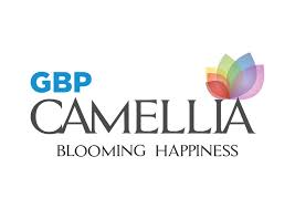 gbp camellia