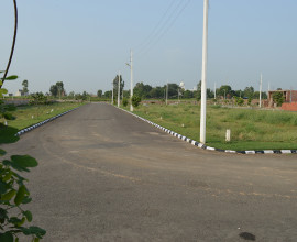 Plots Available in Rose Valley